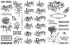 Graphic 45 Time to Flourish Stamp Set